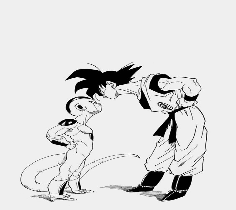 Goku vs frieza BW