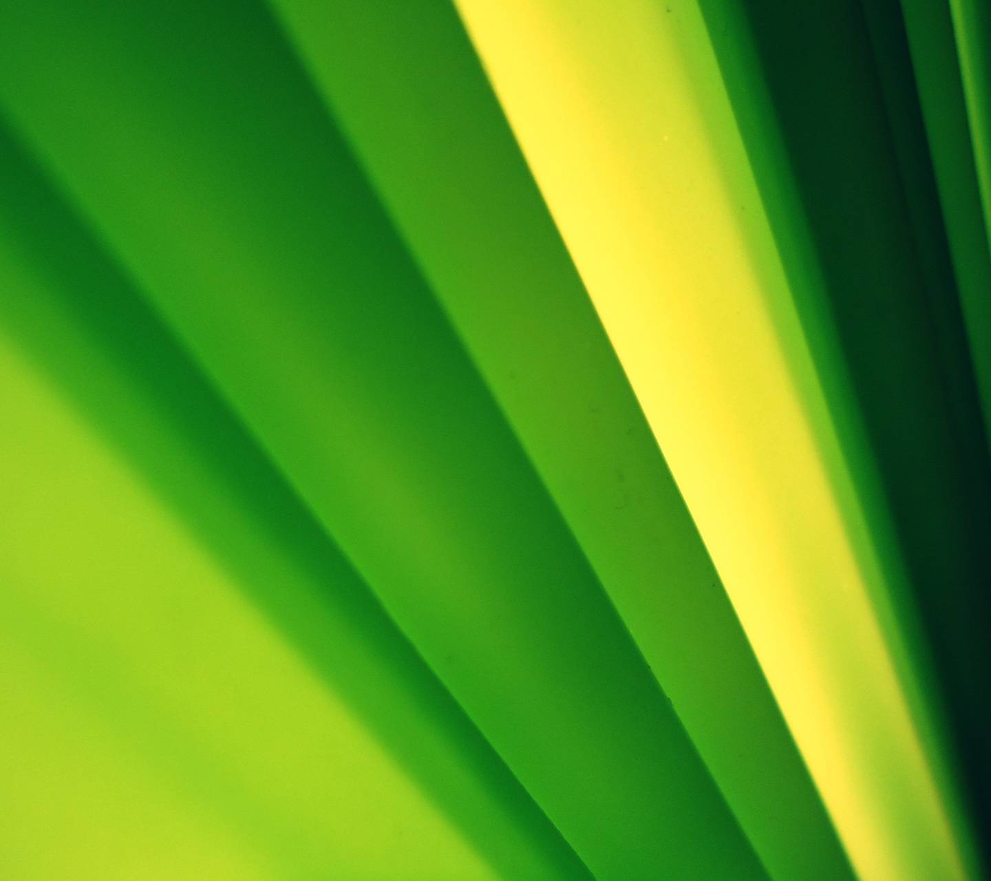 Green Abstract 2