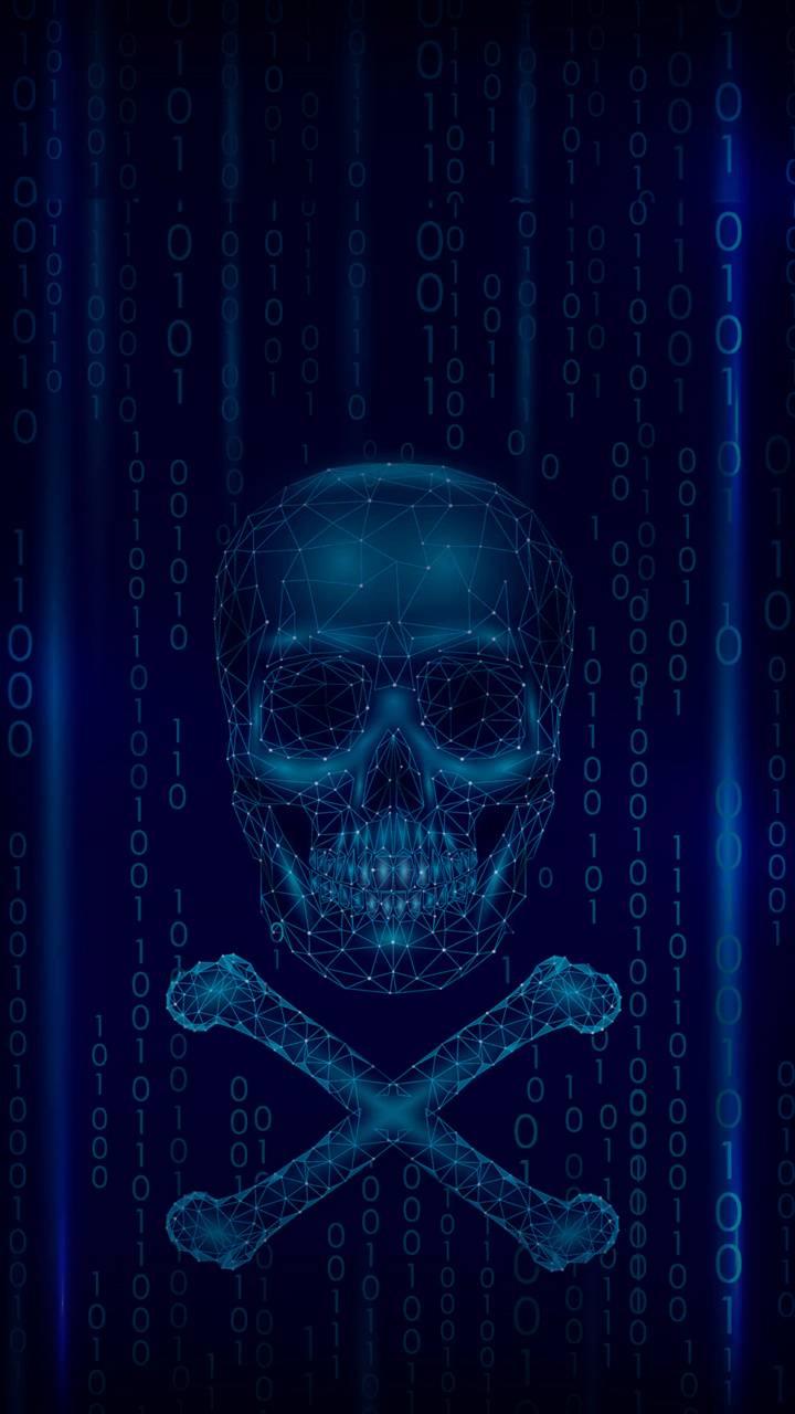 Digital skull