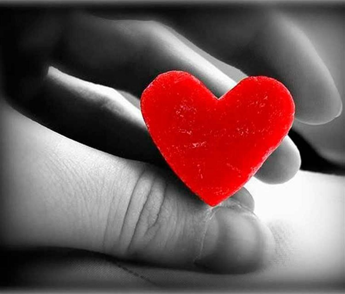 Hd Love