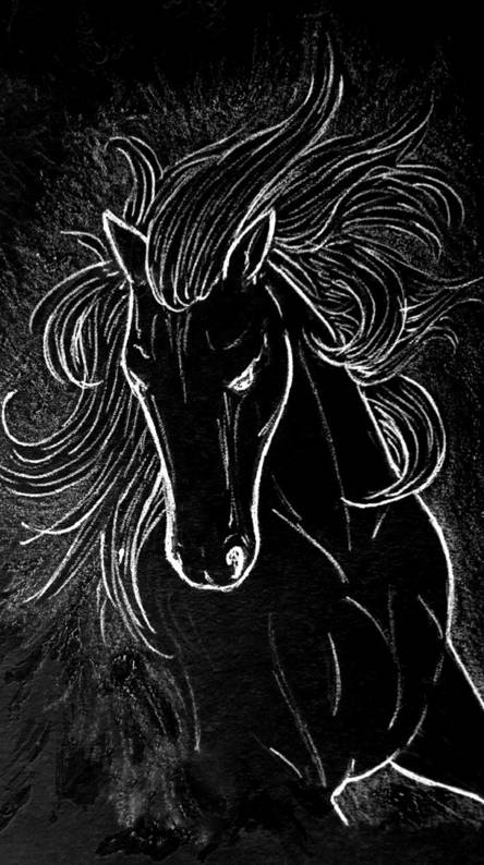 Black Horse Wallpapers Free By Zedge