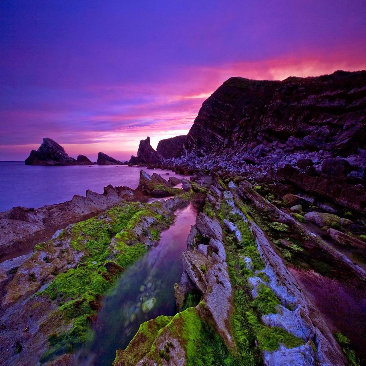 Purple sunset coast