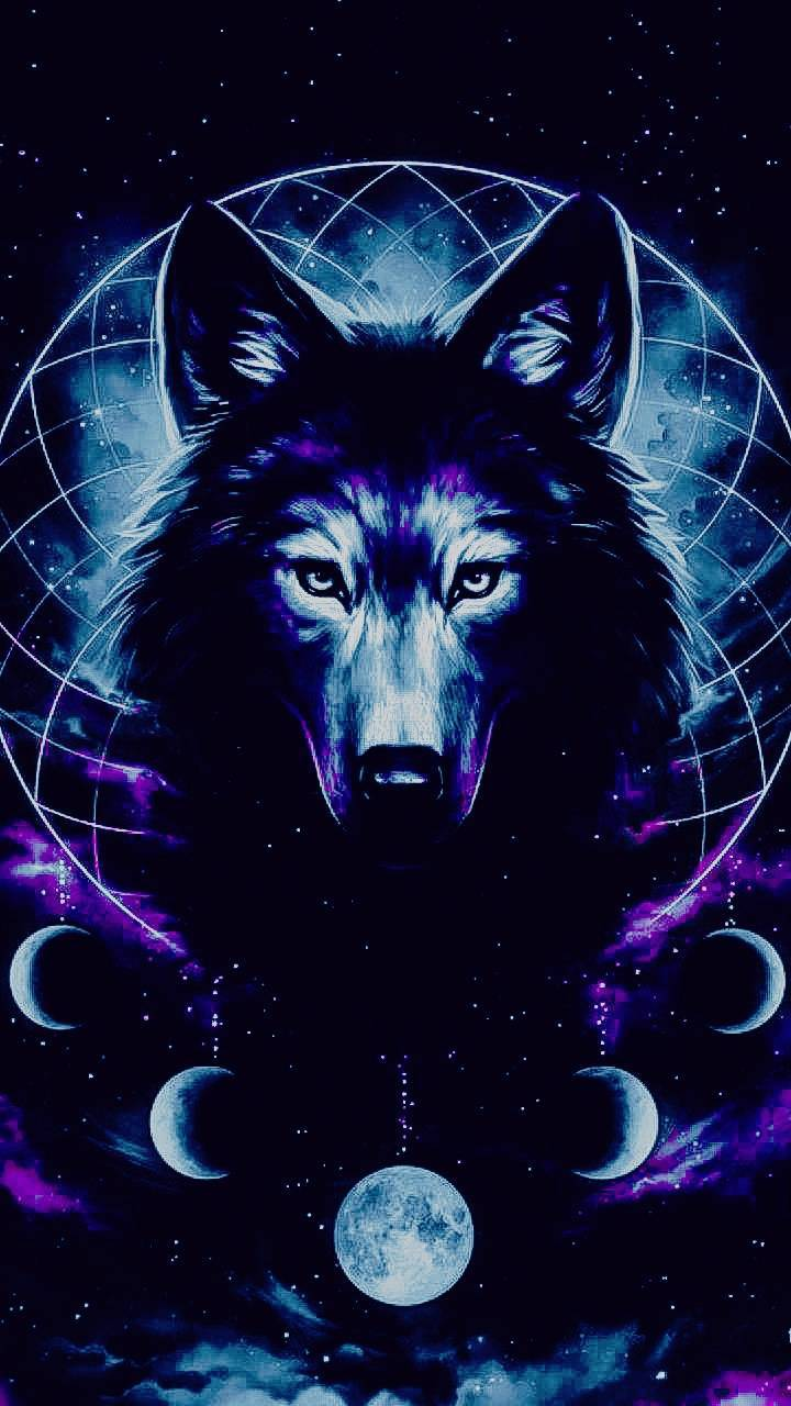 Blue Wolf Wallpaper By Thehatter2 D6 Free On Zedge