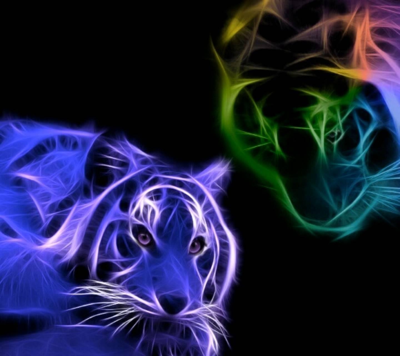 tiger fractals