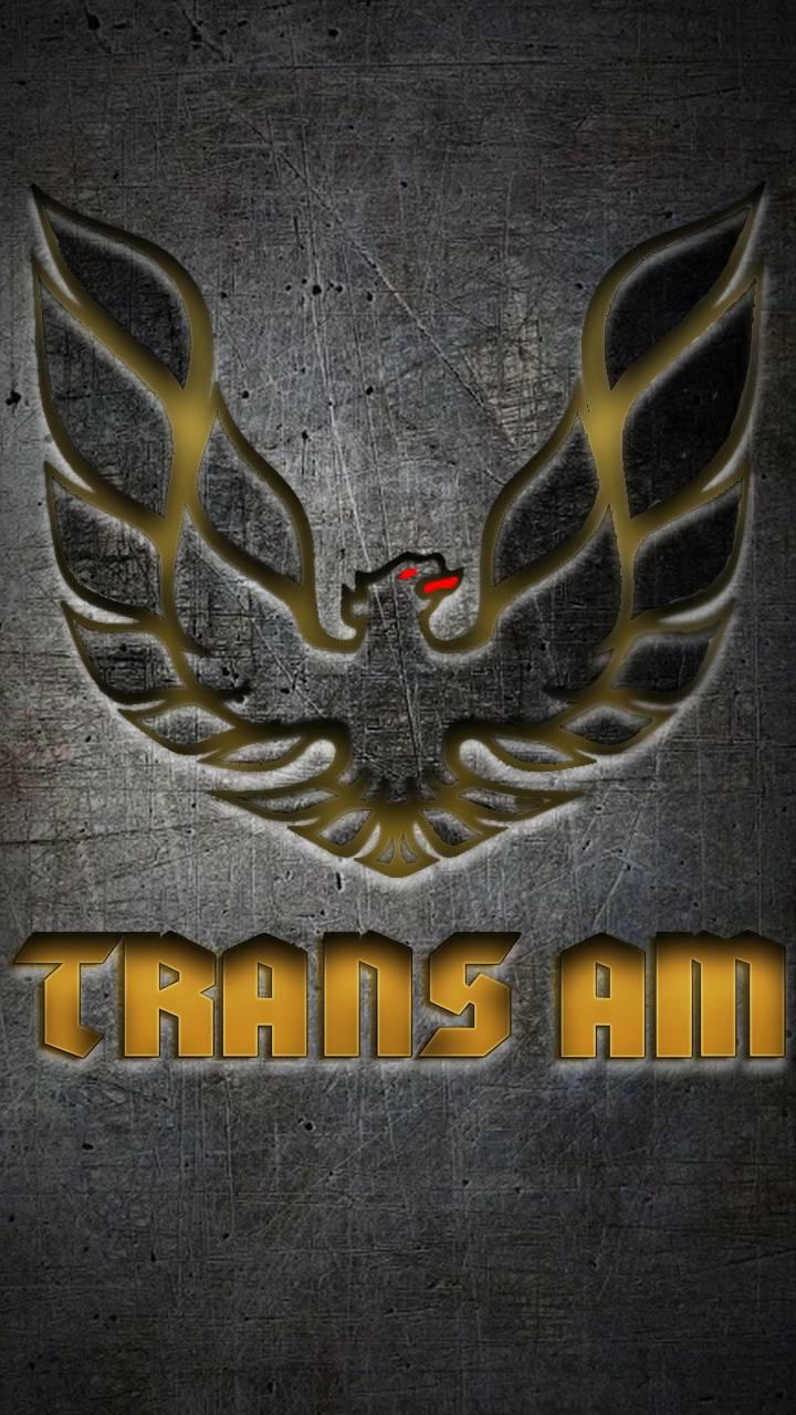 Trans Am Grunge Logo