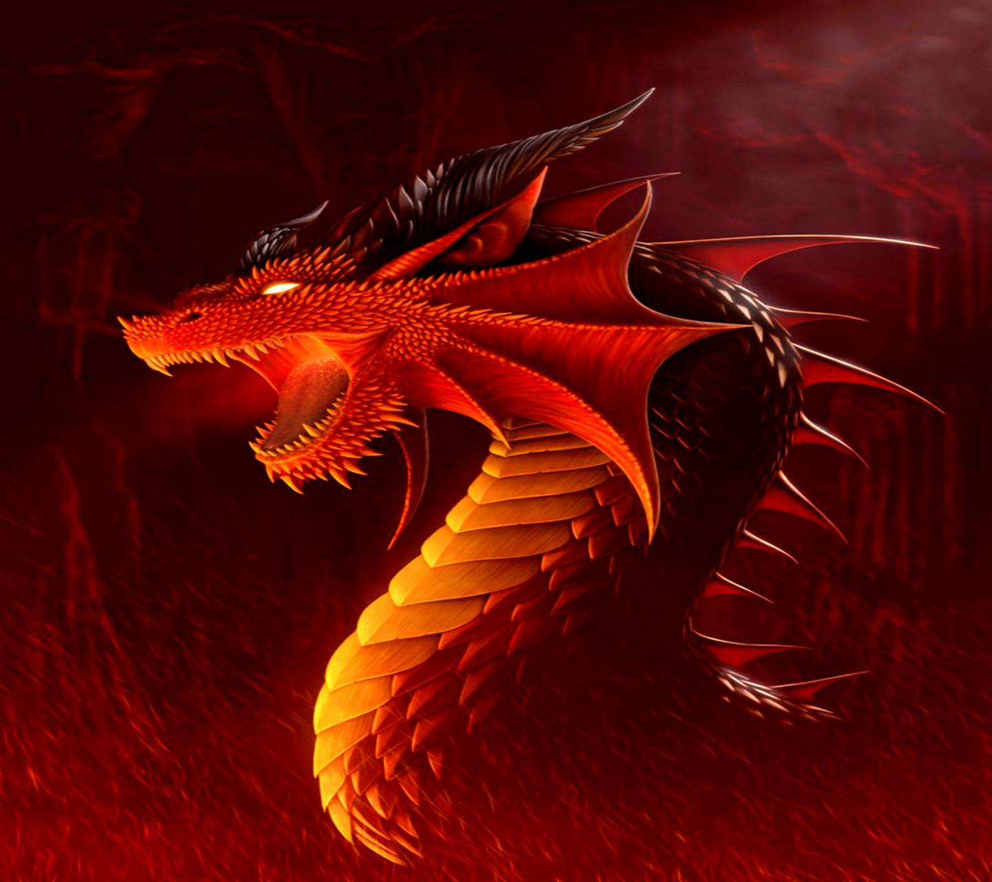 Fire Red Dragon Wallpaper By Zaragil 73 Free On Zedge