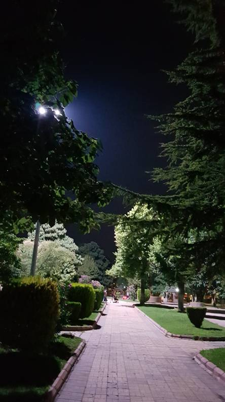 Park in night