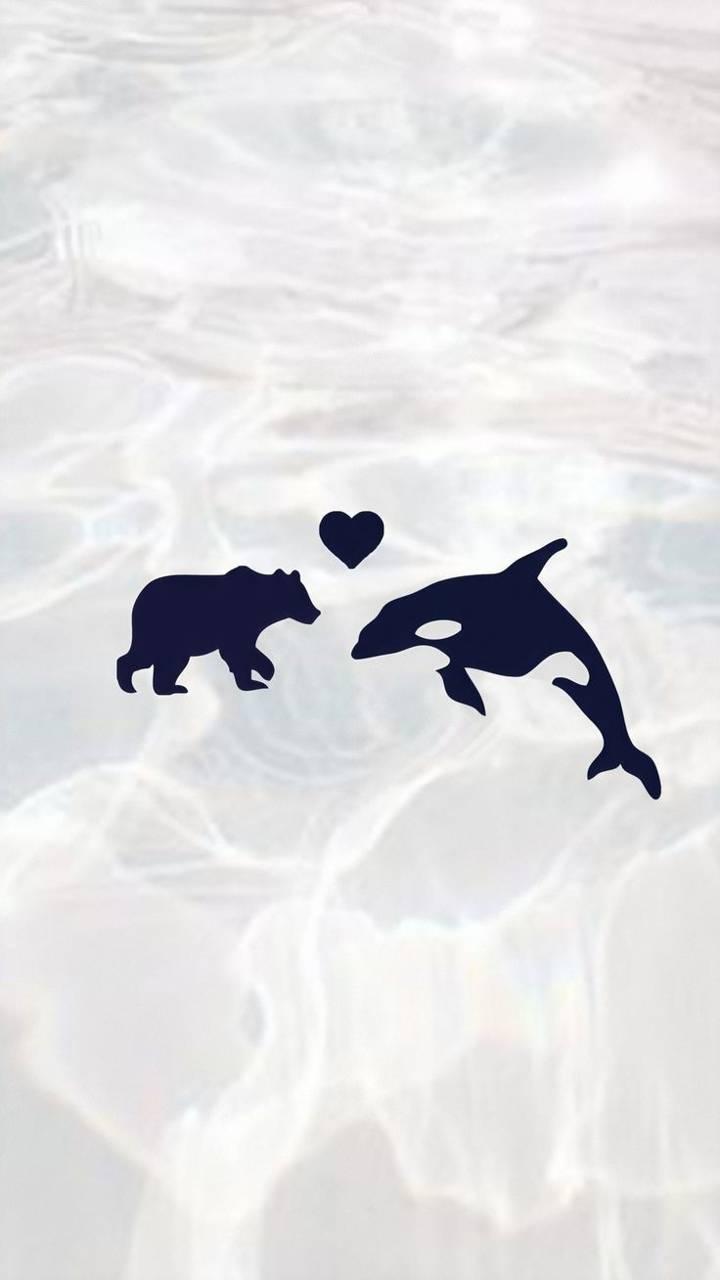 Polar bear with orca
