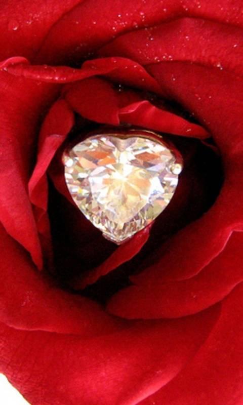 лесных бриллианты и розы фото воду прыгнула