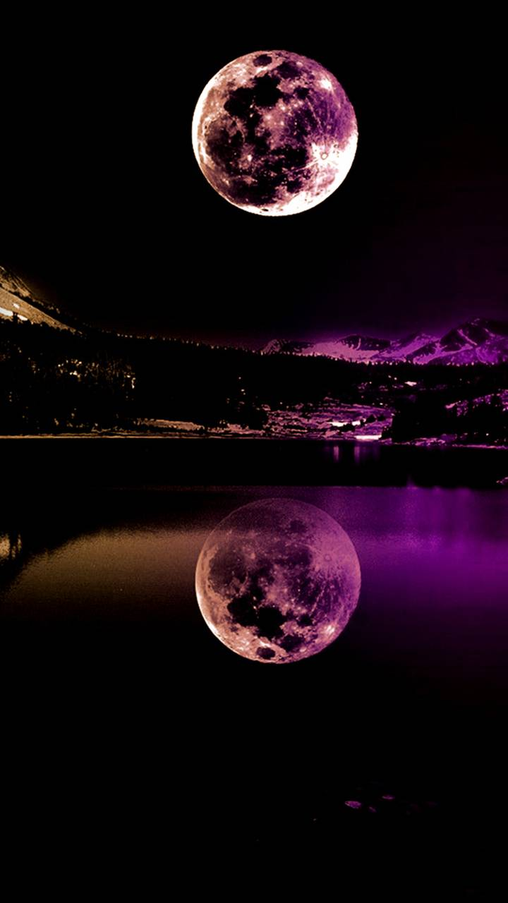 Purple Moonlight