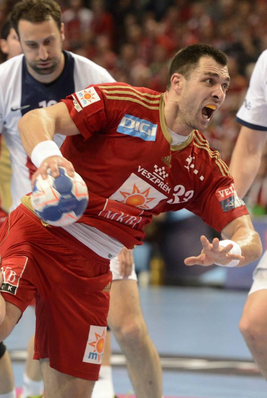 Renato Sulic