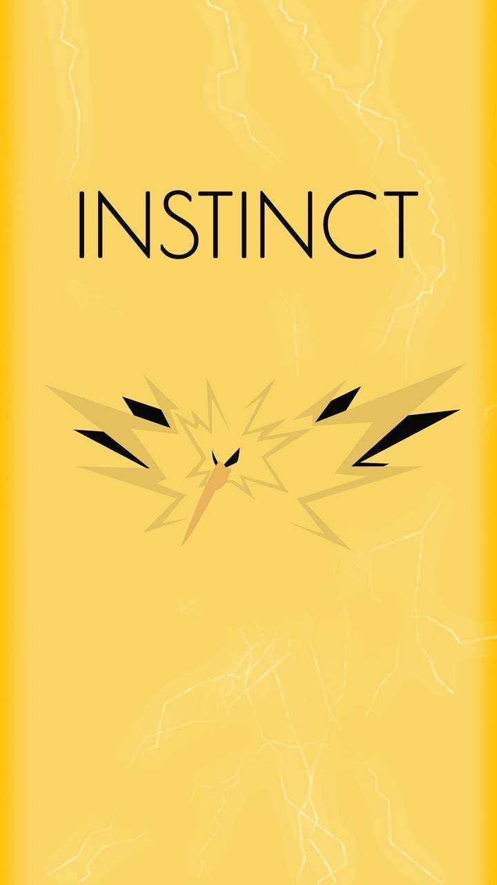 Instinct Team