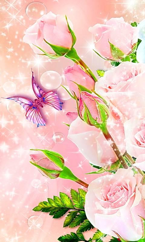 Tender Pink Roses
