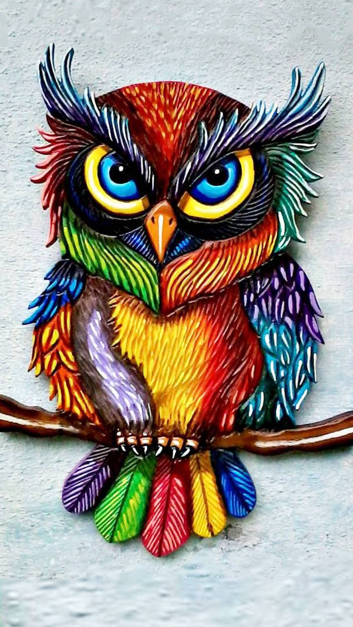 Colorful Owl Wallpaper By Gmatnkr6103188 78 Free On Zedge