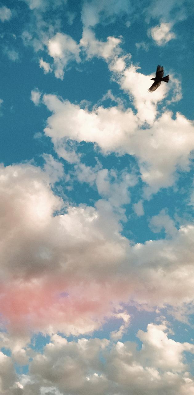 Heaven Dream