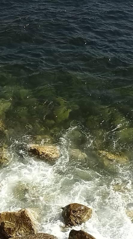 black sea water