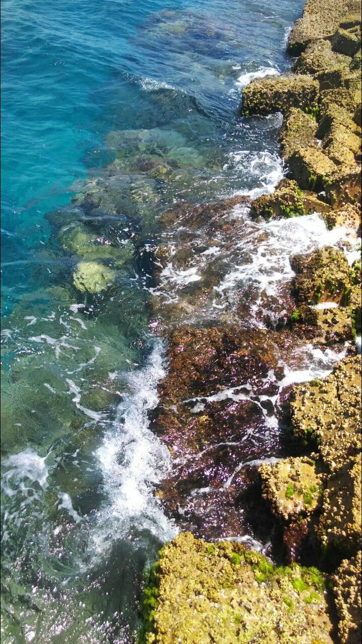 egypt hurghada  sea