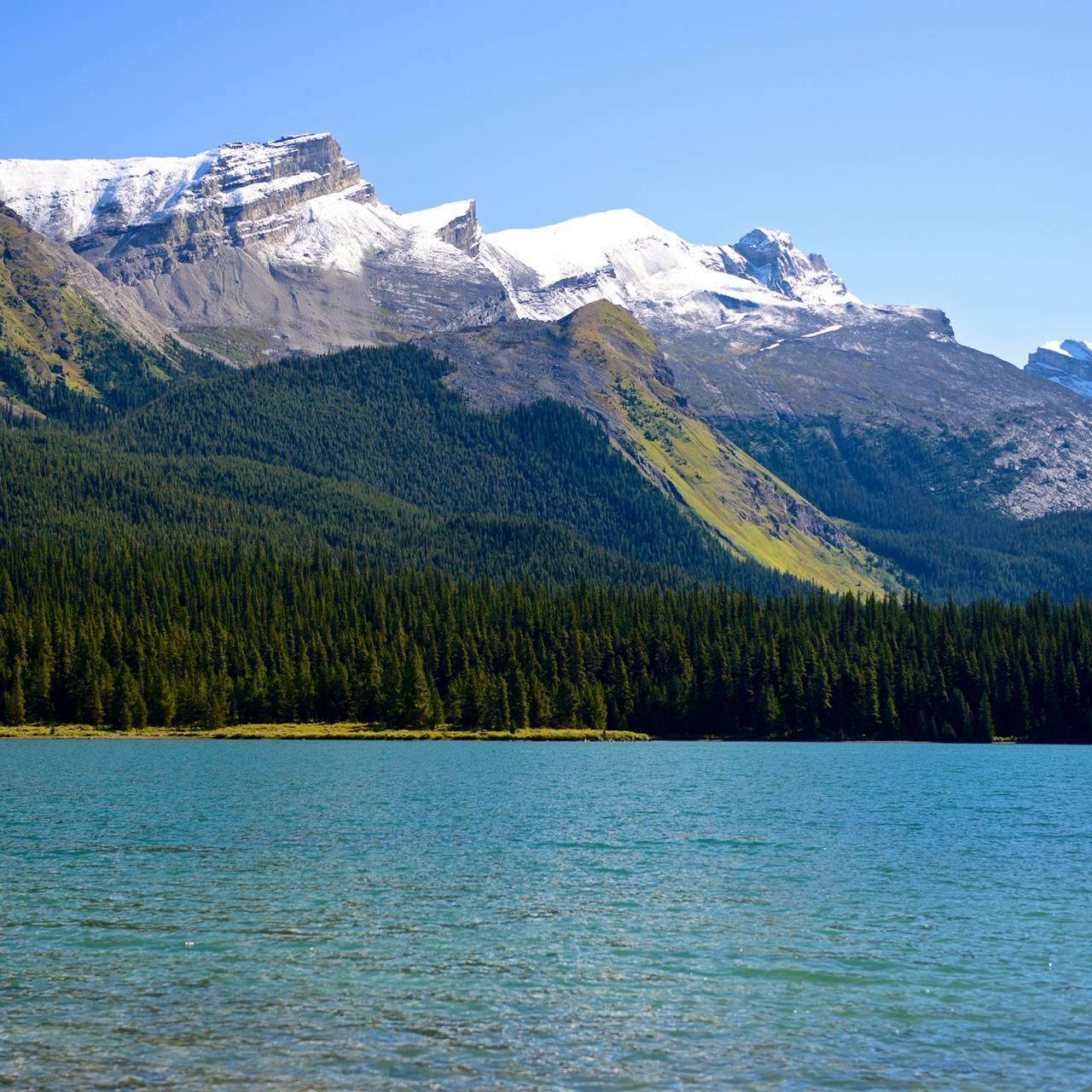 Nature Glacier