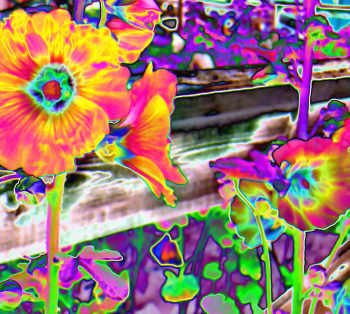 Acid Flowers