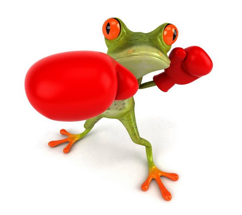 Boxing Frog