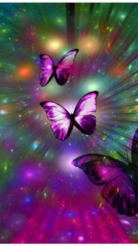 butterfly wallpapers from zedge