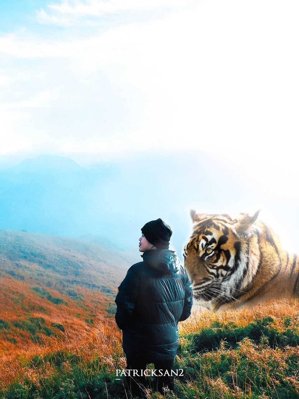 Man and Tiger