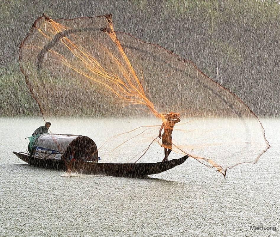 Fish Catch Under Rai