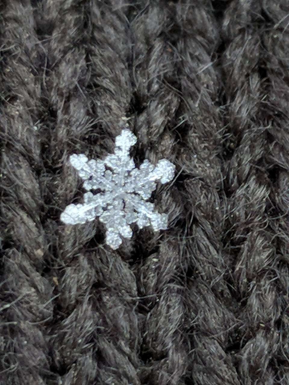 Zoomed snow flake