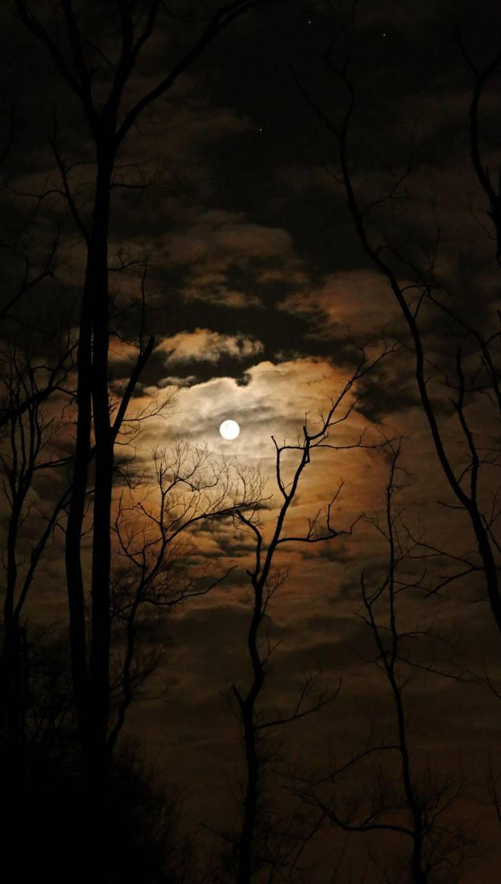 Moon with Nature