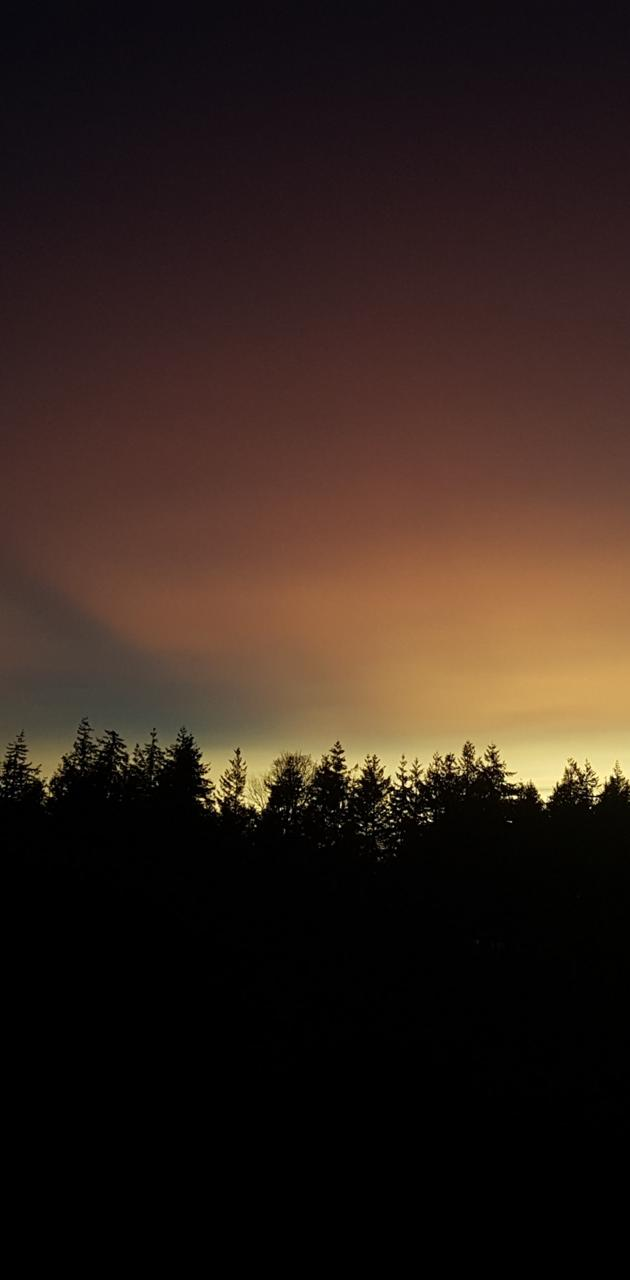 Warm Twilight