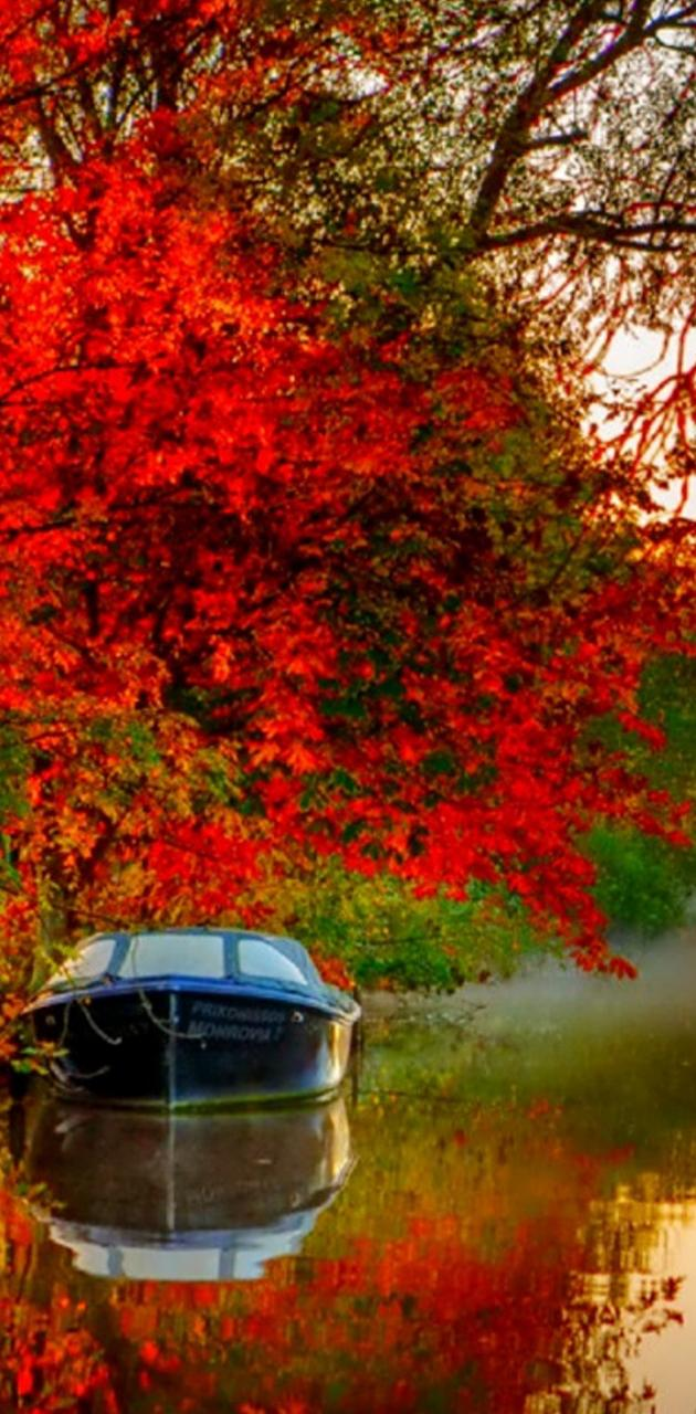 Autumn Ship