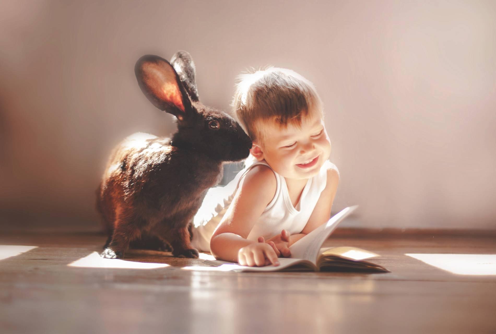 cute rabbit n child
