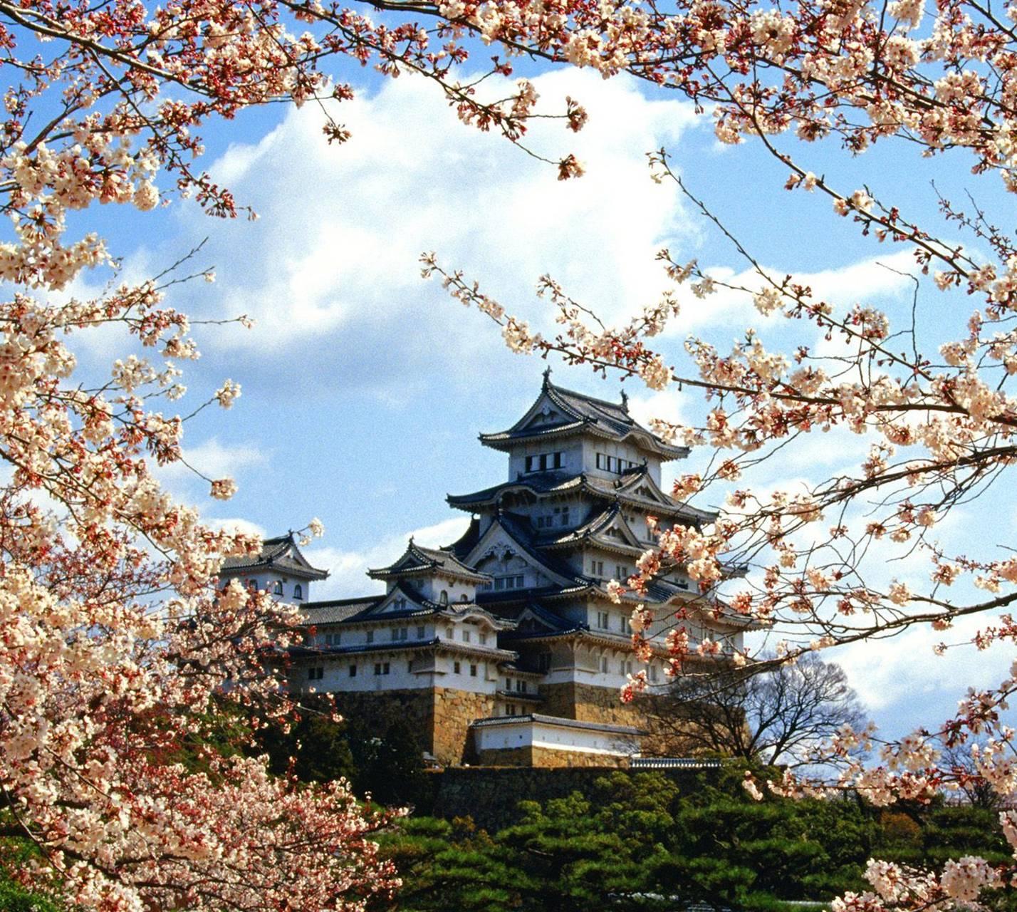 Mistry City Of Japan