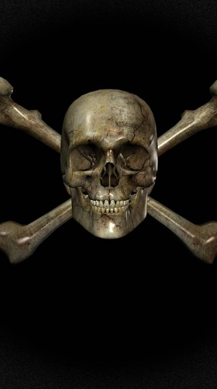 3d Skull Wallpapers Free By Zedge