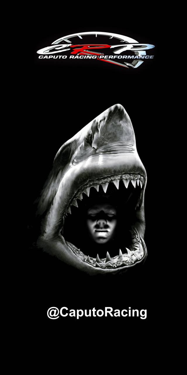 CRP Shark