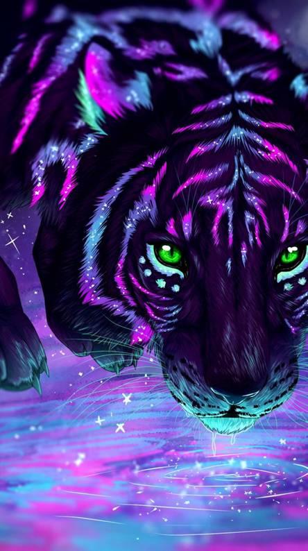 Colerful tiger