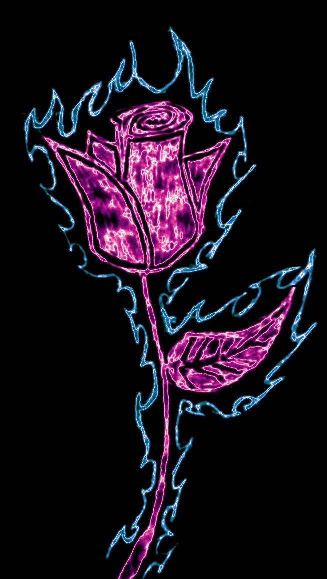 Neon Rose Wallpaper By Jd Bowers 0b Free On Zedge
