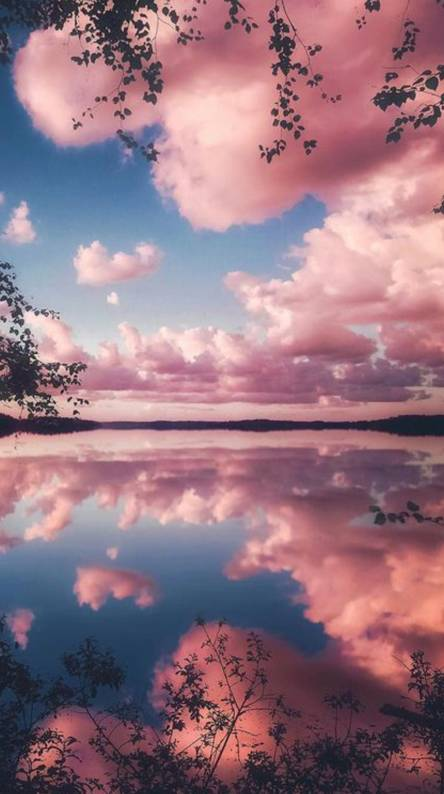 50 Aesthetic Pink Clouds Wallpaper India S Wallpaper