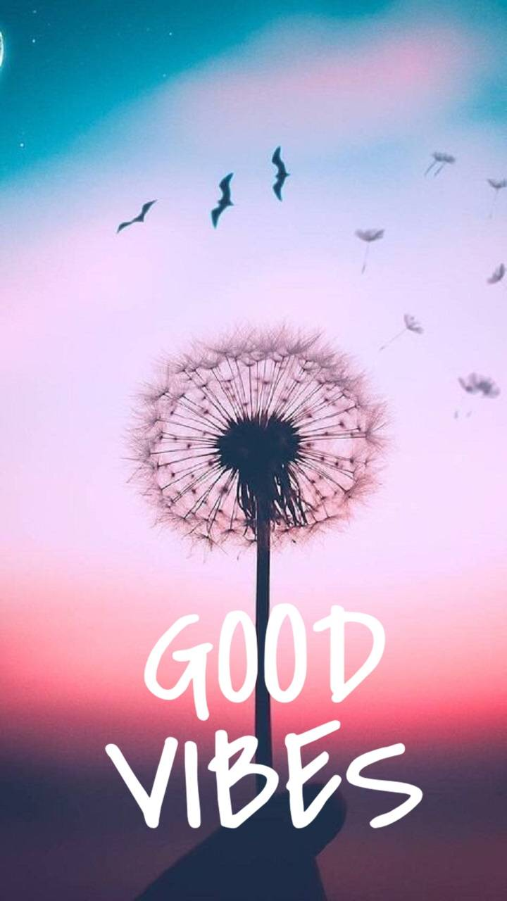 Good Vibes Wallpaper By Brianna1415 49 Free On Zedge