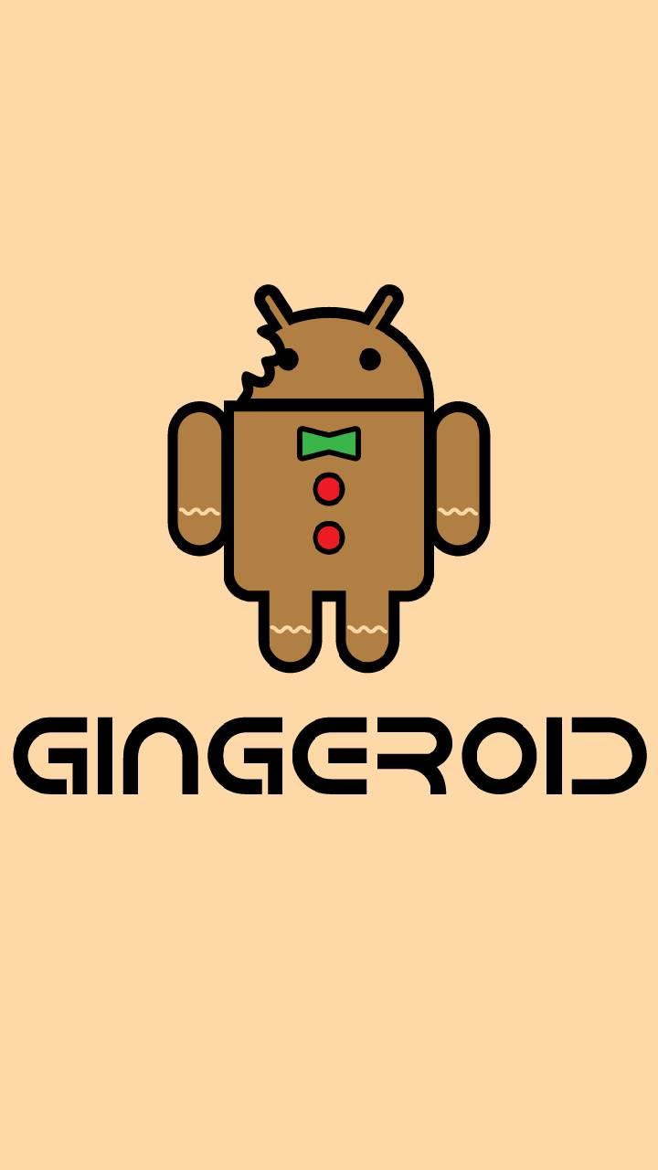 Gingeroid