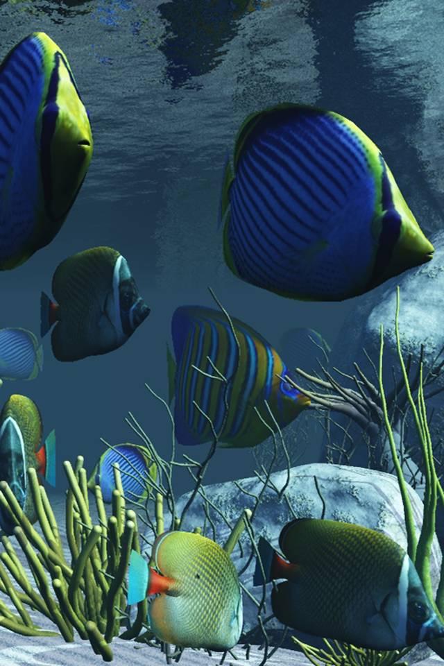 крайней мере, анимация рыба в море лента