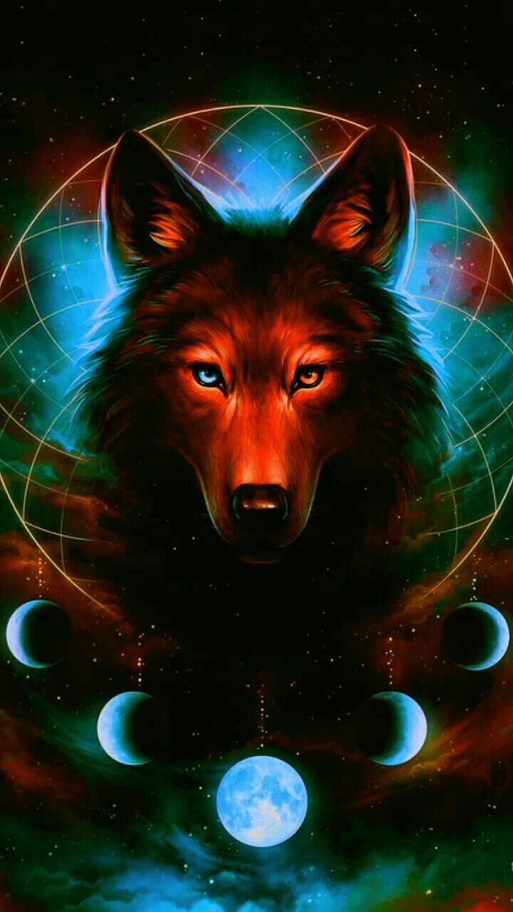 Orange Wolf Moons Wallpaper By Katiekittybone 24 Free On Zedge