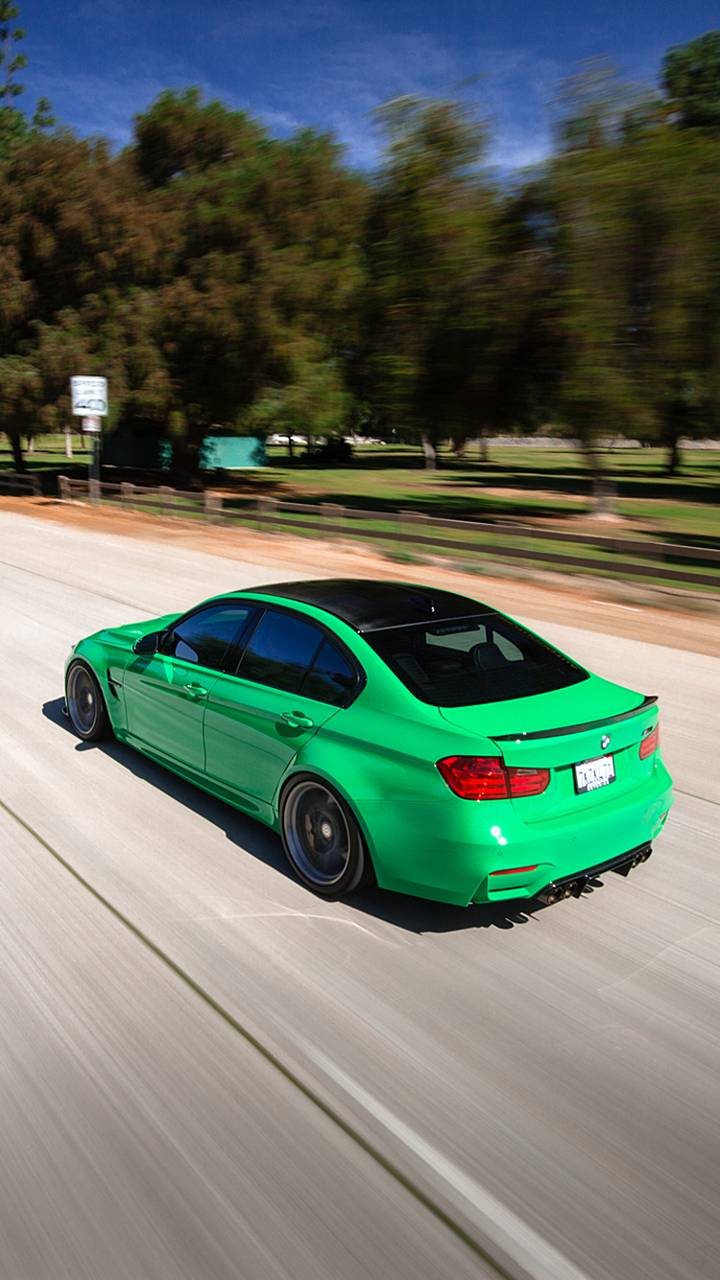 Kermit M3