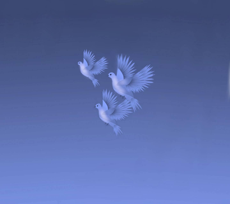 Lovely Birds 1