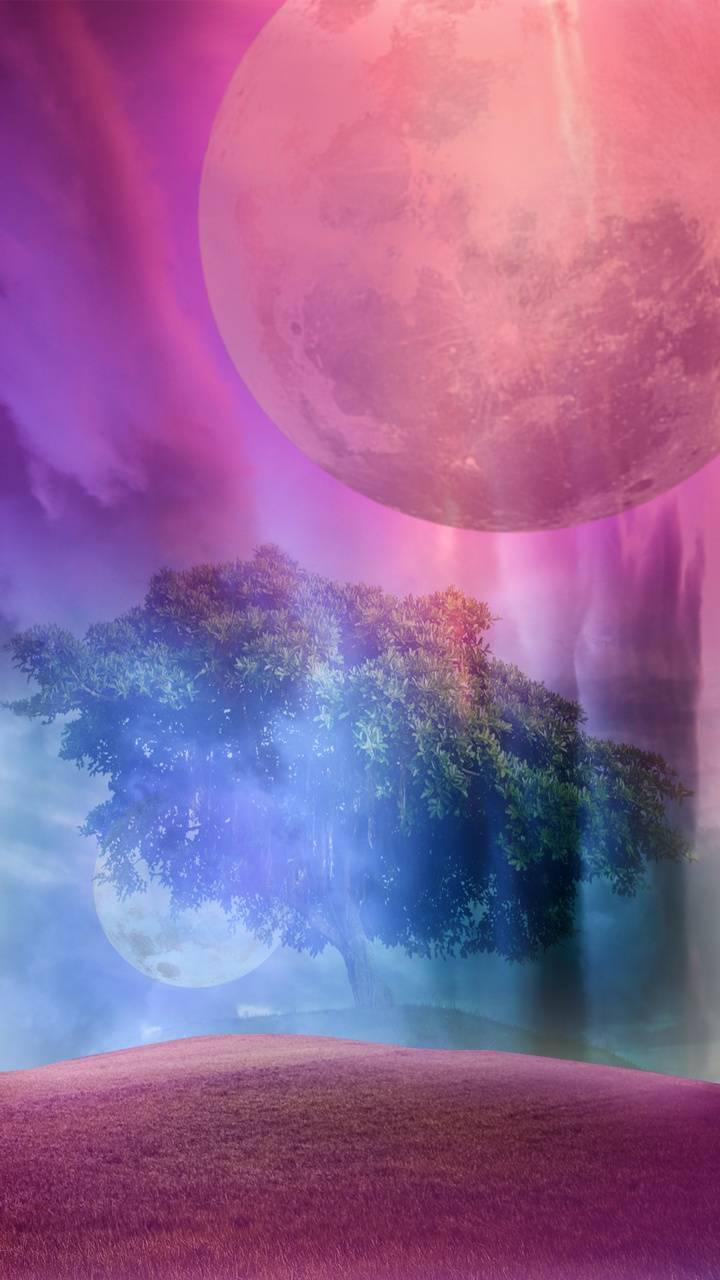 dream sky violet