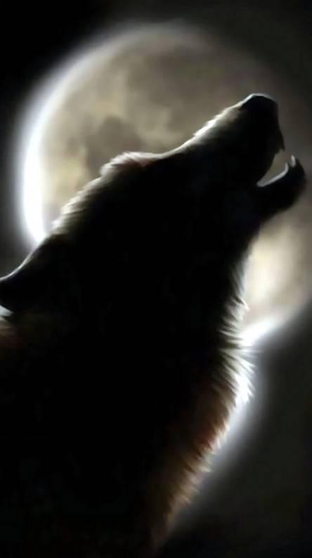 Forestwolves