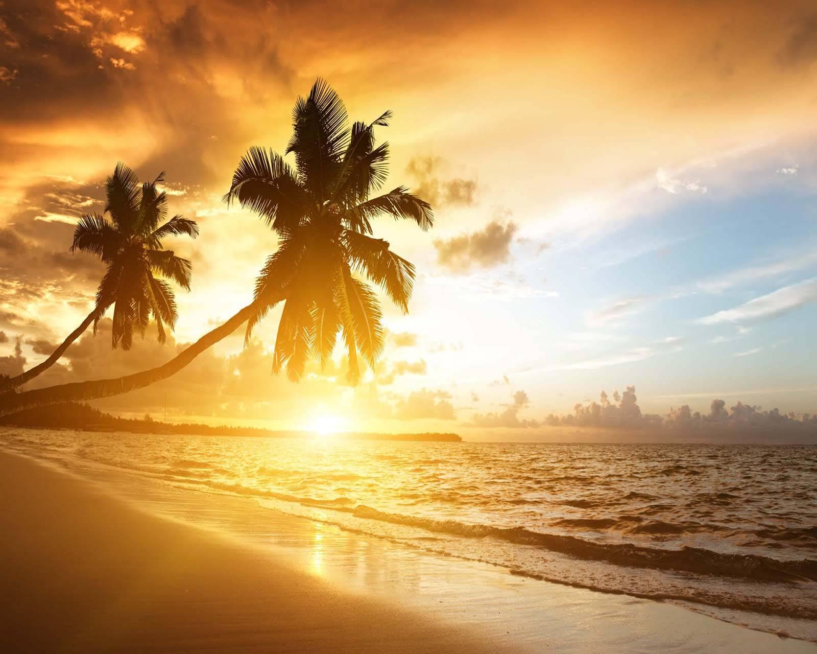 Scenery sunrise
