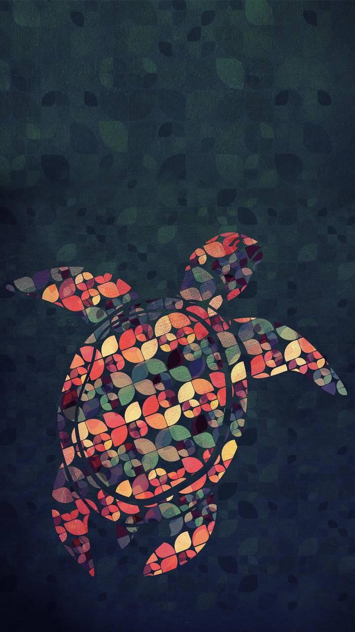 The Pattern Tortoise