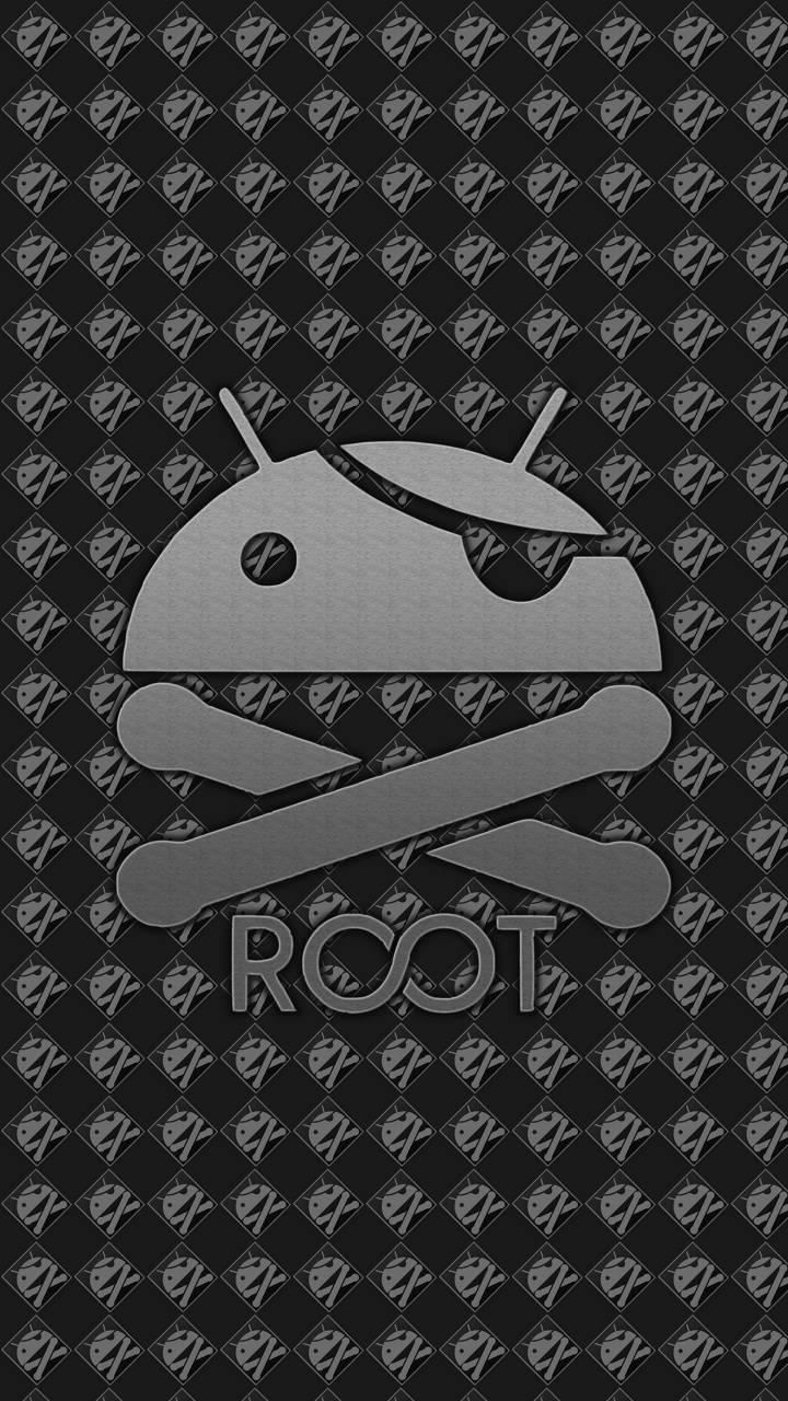 Root User