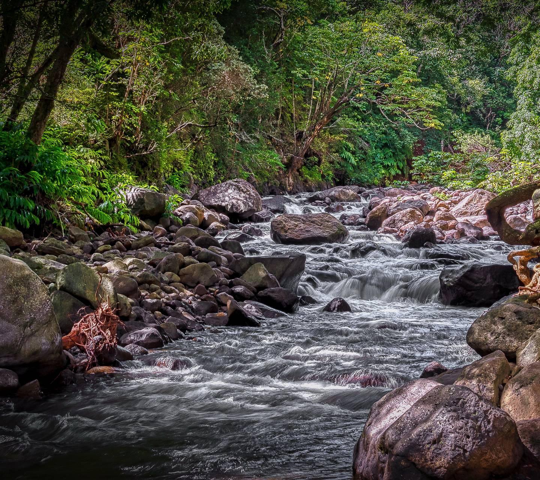 Maui Hawaii Stream